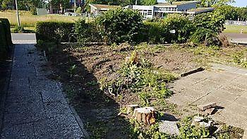 Rooien en planten van bomen, coniferen en struiken, plaatsen van beschoeiingen Kamperman Grondwerk Groningen Scheemda