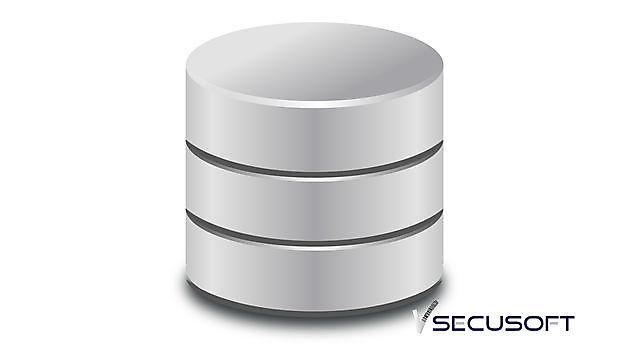 Al onze gebruikers een eigen database - SecuSoft Software Beveiligingsbedrijven